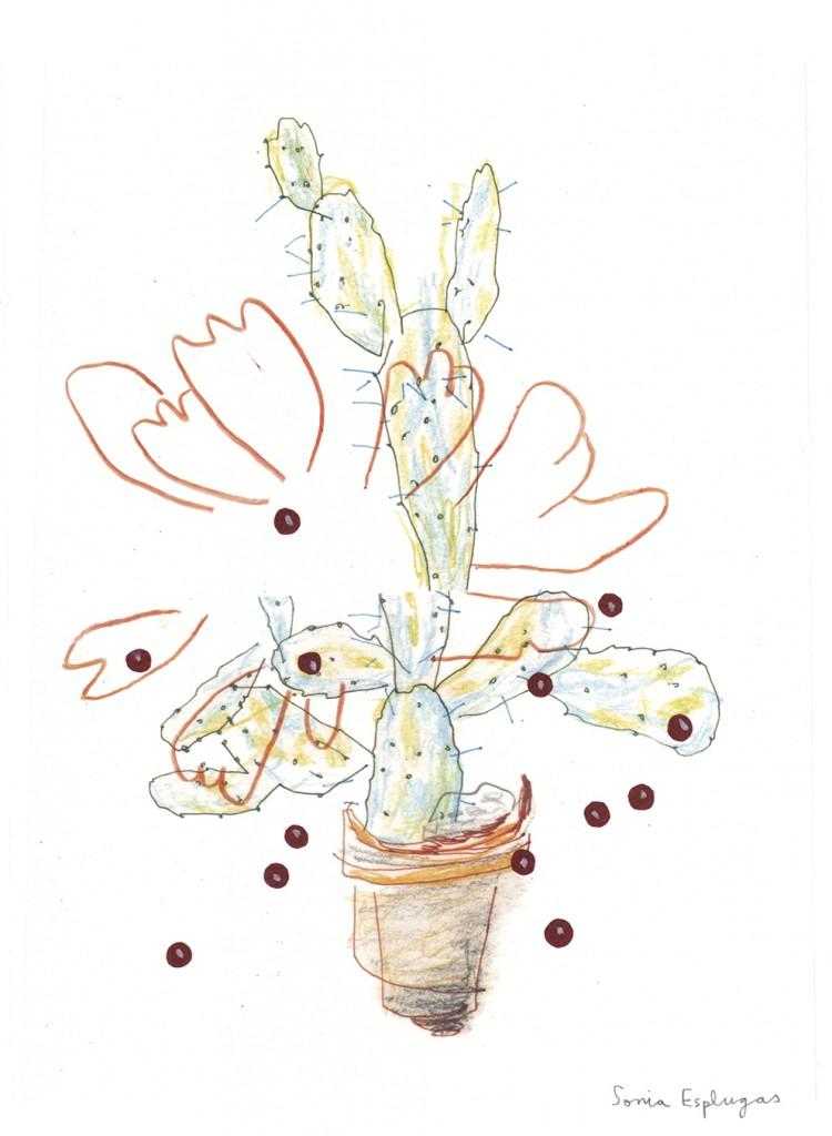 """""""Cactus"""", de Sonia Esplugas"""