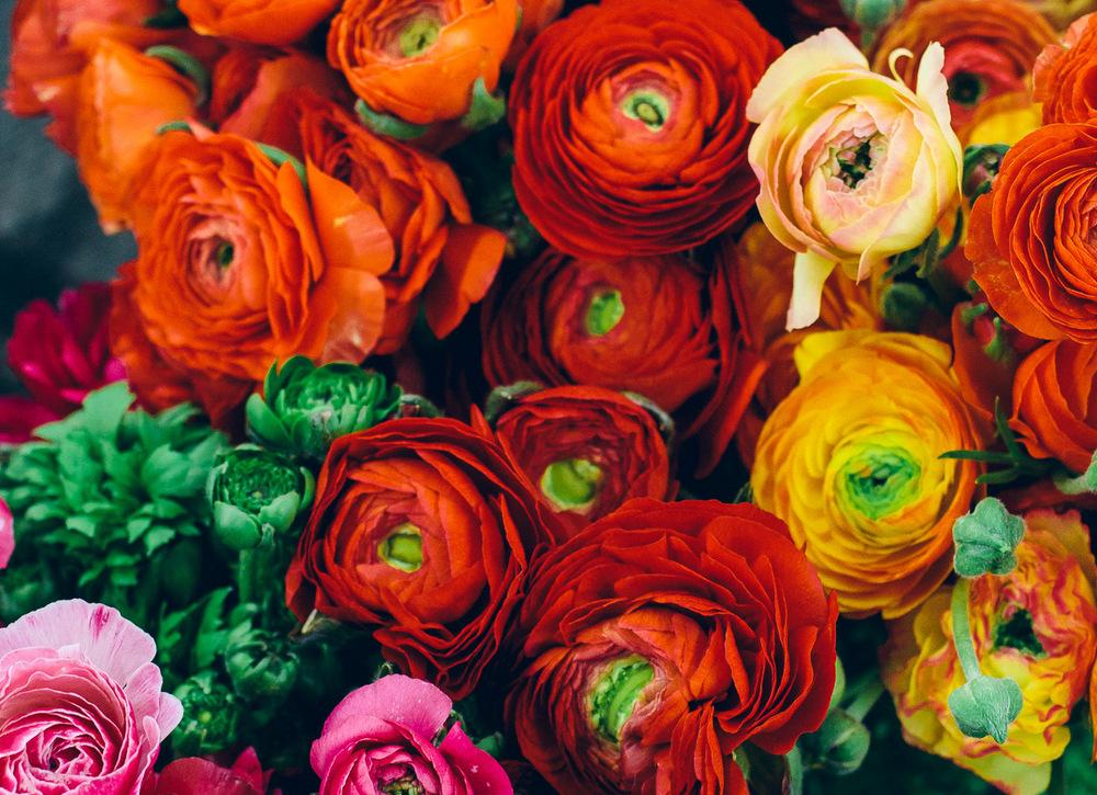 1-flors-al-mercat_flors_01